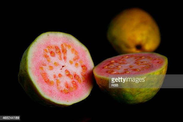 guava fruit - guava fruit stock photos and pictures