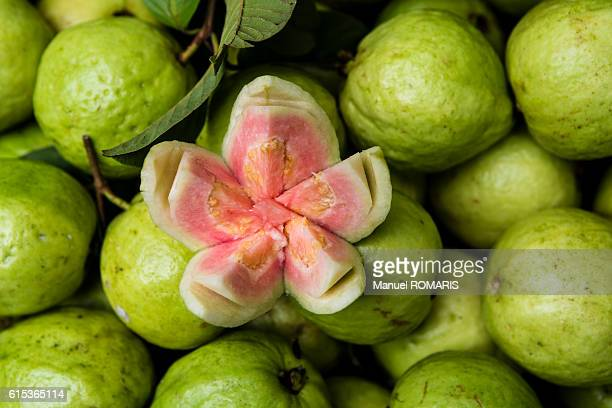 guava tropical fruit at street market - guava fruit stock photos and pictures