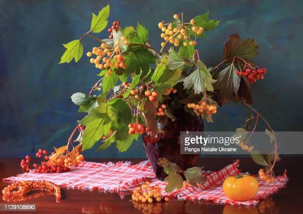 guelder rose bouquet with ripening berries in red glass jug - doily ストックフォトと画像