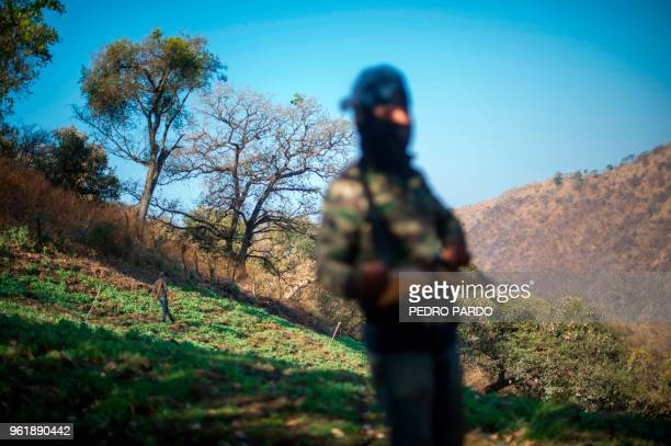 Guerrero Community Police members patrol at an illegal poppy field in Heliodoro Castillo Guerrero state Mexico on March 25 2018 In the mountains of...