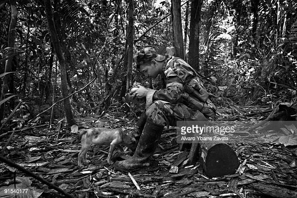 FARC guerrilla member playing with a puppy inside one of the FARC camps