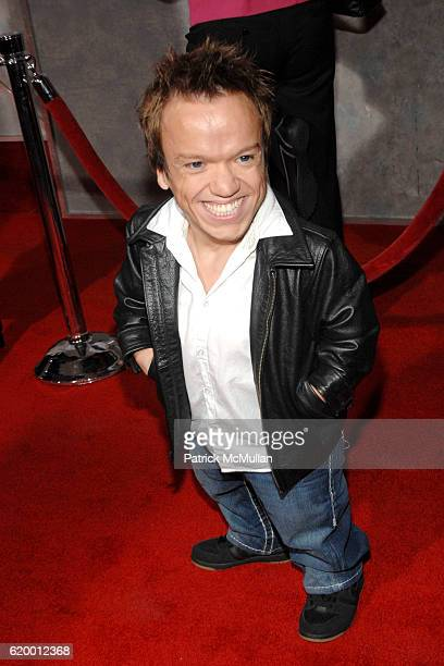Guest attends Bedtime Stories Premiere at El Capitan Theatre on December 18 2008 in Los Angeles Ca