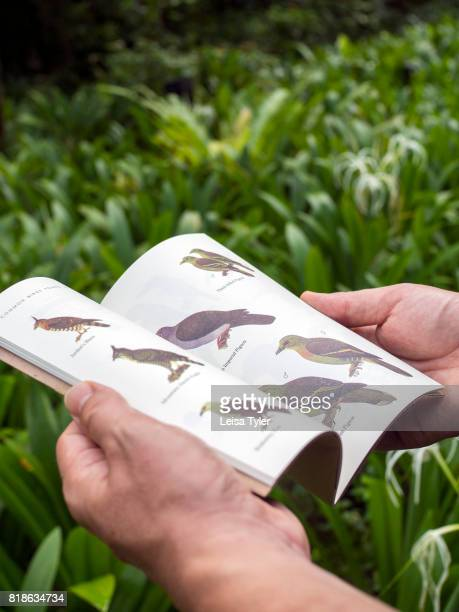 A guest reading luxury resort The Datai's nature compendium The first place to rise from the ocean during the Cambrian Period Langkawi is a Geopark...