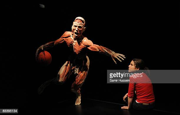 Guest views an exhibit at Gunther von Hagens' 'Body Worlds And The Mirror Of Time' exhibition at the O2 bubble on October 23, 2008 in London,...