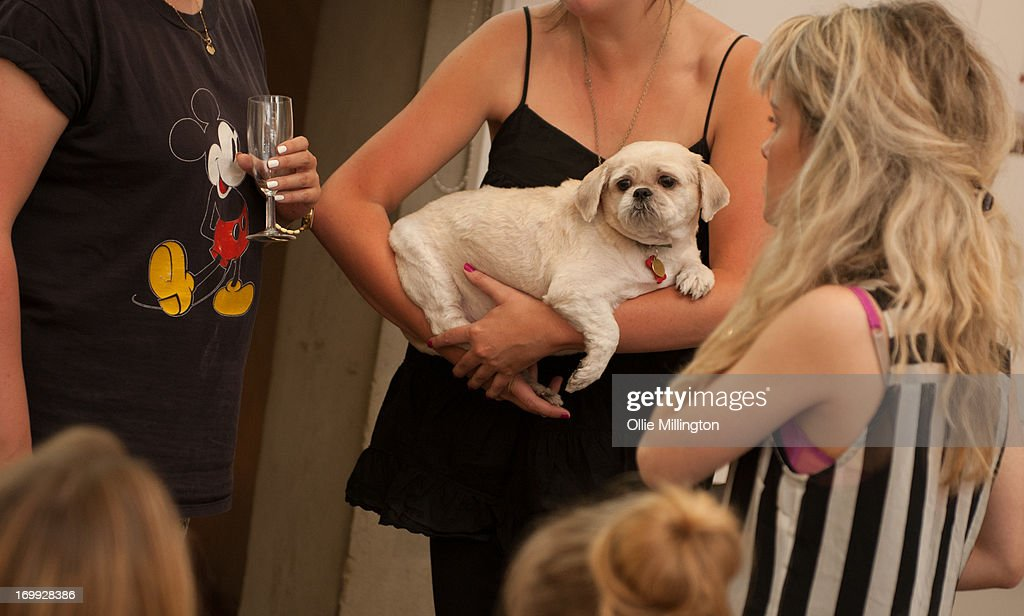 Guests and their dogs attend the petspyjamas.com fashion industry pet party hosted by Made in Chelsea star Rosie Fortescue with her Dachshund Noodle on June 4, 2013 in London, England.