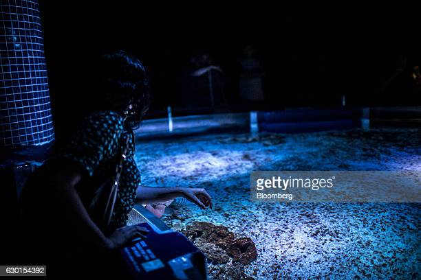 A guests waits for fish to swim by inside the touch tank at AquaRio South America's largest aquarium in Rio de Janeiro Brazil on Saturday Dec 3 2016...