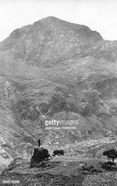 Guetteur Harkis dans la vallée d'Ait Adja en Kabylie en 1959 pendant la guerre d'Algérie