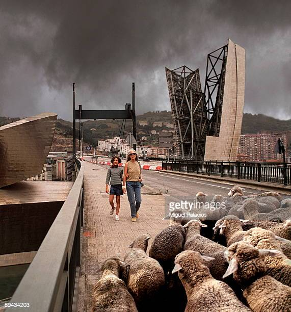 Guggenheim Museum and sheep. Bilbao. Basque County.
