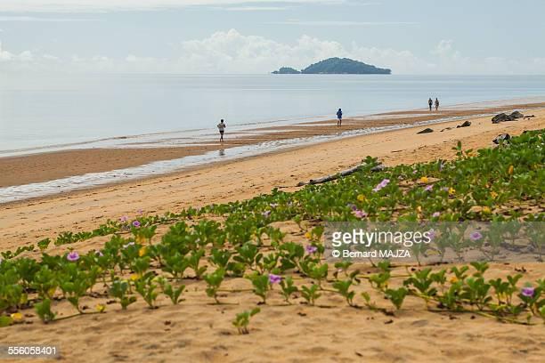 Guiana Beach