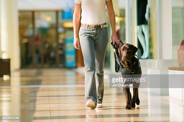 Guide Dog Leading Owner in Mall