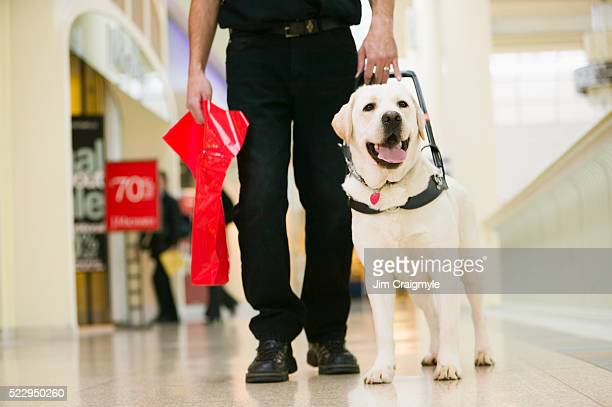 guide dog with owner in shopping mall - guide dog stock photos and pictures