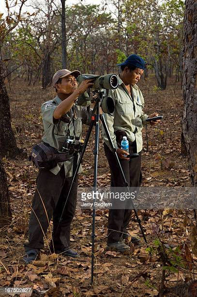 Guide Keo Samon, left, and project leader Vann Rours look at a distant tree which holds a white-shouldered ibis bird nest. Two of the world's rarest...