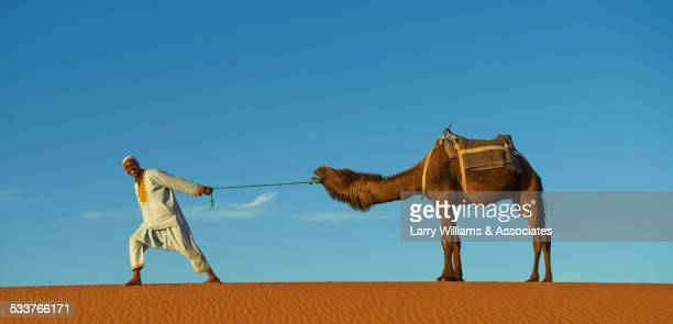 Guide pulling camel on sand dune