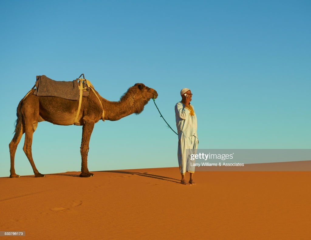 Guide talking on cell phone with camel on sand dune : Foto stock
