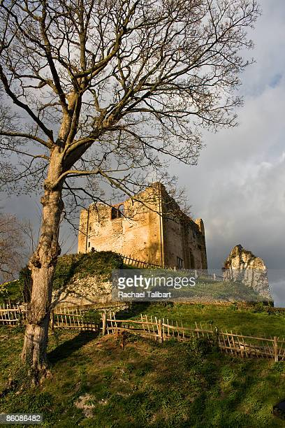 guildford castle - surrey england stock photos and pictures