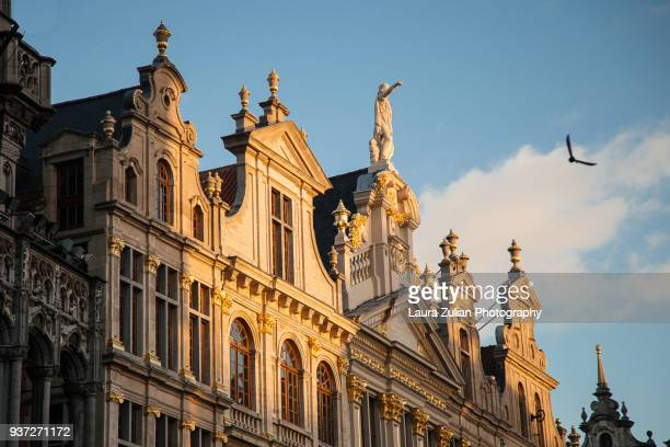 guildhalls on the grote markt square - brussels capital region stock pictures, royalty-free photos & images