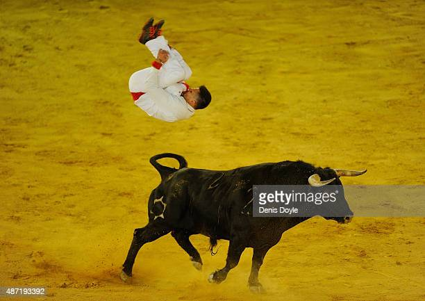 Guillaume Vergonzeanne of the French Recortadores company Passion Saltador somersaults over a charging bull at the end of the Liga de Corte Puro...
