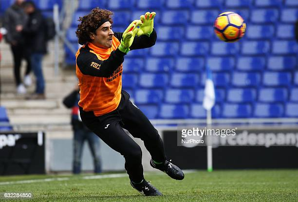 Guillermo Ochoa during the match between RCD Espanyol and Granada CF on January 21 2017 in Barcelona Spain