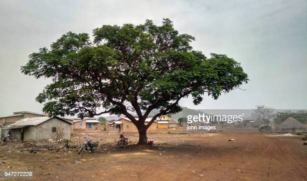 guinean suburbs - guinea stock pictures, royalty-free photos & images