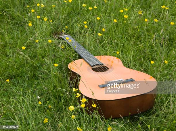 guitar in a field - buttercup stock pictures, royalty-free photos & images