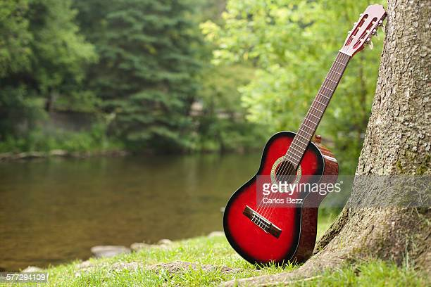 guitar on nature - classical guitar stock photos and pictures