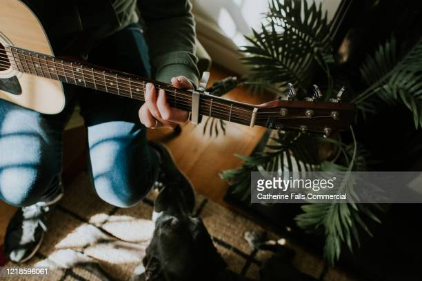 guitar player and dog - songwriter stock pictures, royalty-free photos & images