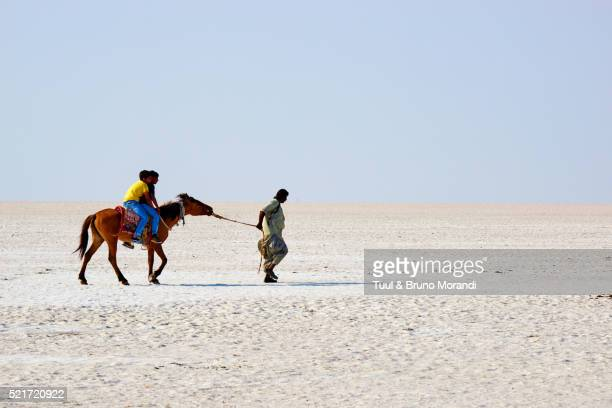 Gujarat, Rann of Kutch, salt desert