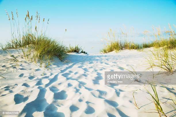 gulf coast white sandy beaches - gulf shores - fotografias e filmes do acervo