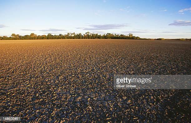 Gulf country at Cape York Peninsula.