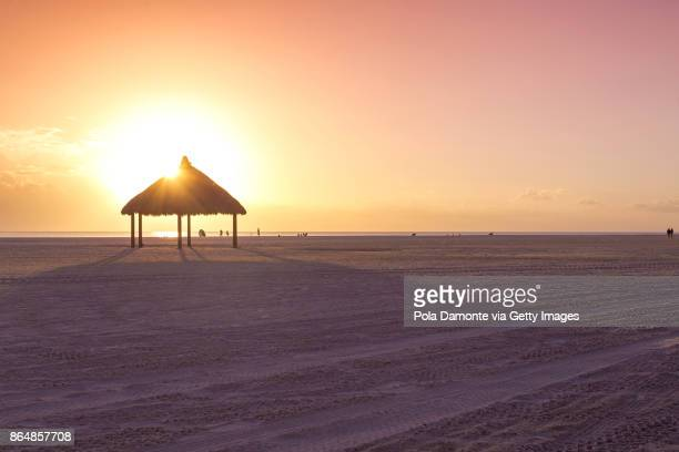 Gulf of Mexico beach. Marco Island beach in Florida. Palm thatch at the beach.