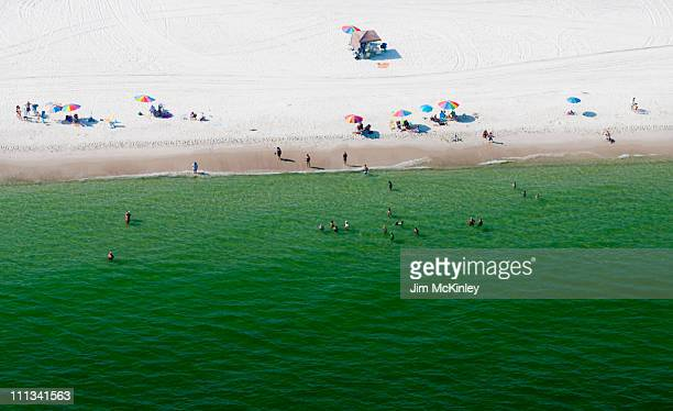 gulf shores, alabama - gulf shores alabama stock pictures, royalty-free photos & images