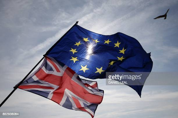 Gull flies above European and Union flags in Brighton on September 24 during a march against Brexit. Britain's revitalised Labour opposition kicks...