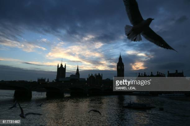 TOPSHOT Gulls fly over The River Thames as the sun sets behind the Palace of Westminster in central London on October 24 2016 / AFP / DANIEL...