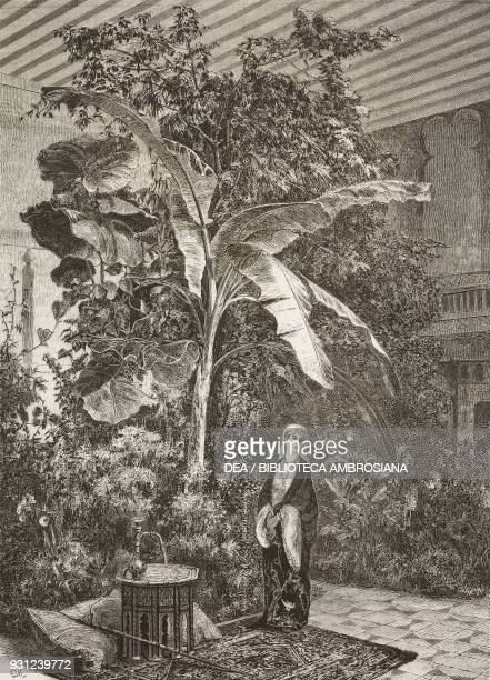 Gulnara woman in an exotic garden painting by Edoardo Tofano drawing by Francesco Paolo Michetti engraving from L'Illustrazione Italiana Year 3 No 20...