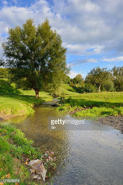 覚える甘ったる川 - オランダ リンブルフ州 ストックフォトと画像