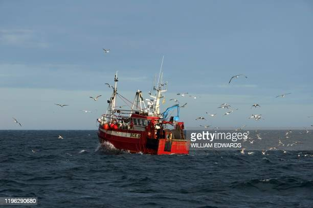 Guls surround a fishing trawler as it works in the North Sea, off the coast of North Shields, in northeast England on January 21, 2020. - Just before...