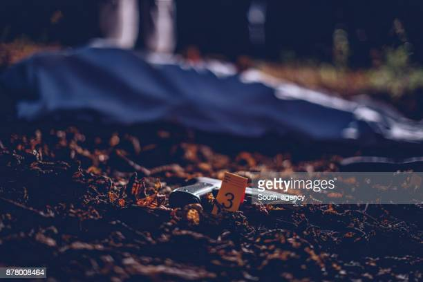 gun at the murder scene - dead body stock pictures, royalty-free photos & images