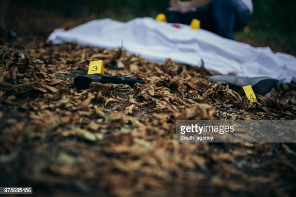 gun at the murder scene - criminal investigation stock pictures, royalty-free photos & images