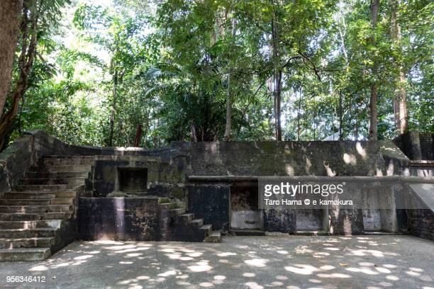 Gun Emplacement reserved in Labrador Nature Reserve in Singapore
