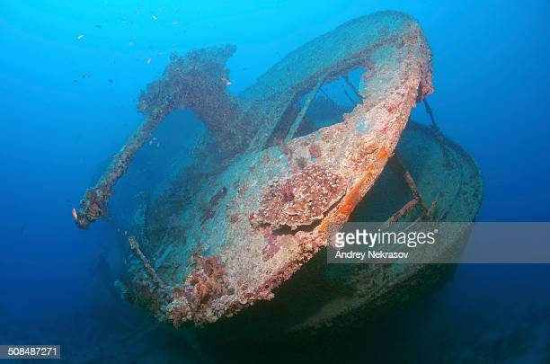 Gun on the stern of the SS Thistlegorm shipwreck, Red Sea, Egypt