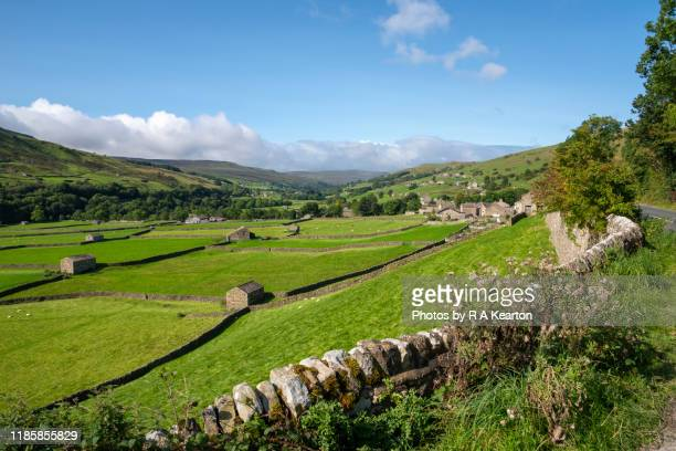 gunnerside meadows, swaledale, north yorkshire, england - north yorkshire stock pictures, royalty-free photos & images