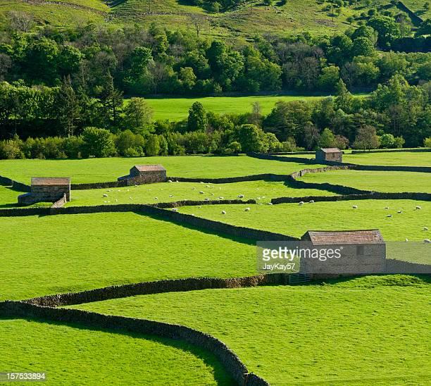 gunnerside ヨークシャー - 石造りの家 ストックフォトと画像