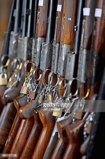 Guns on display at the Gavin Gardiner preview of his annual auction of Modern Vintage Sporting Guns being held at Gleneagles Hotel on August 21 2015...