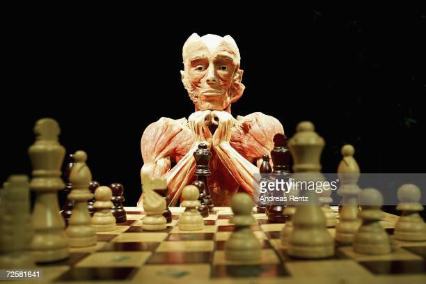 """Gunther von Hagens, known as """"The Plastinator"""", shows a exhibit who plays chess at the Plastinarium workshop and showroom during the inauguration on..."""