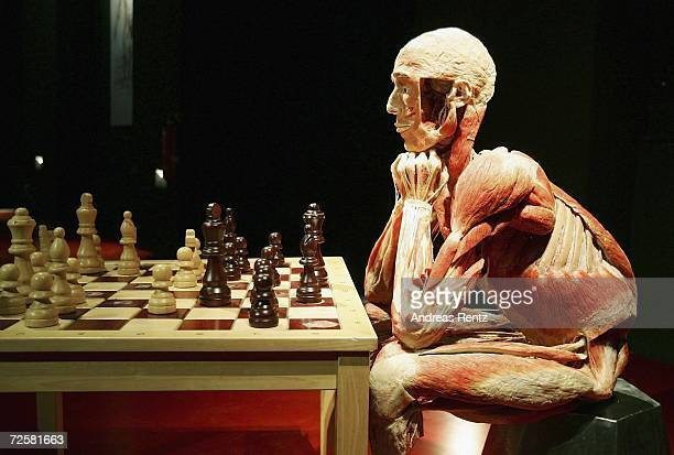 Gunther von Hagens known as The Plastinator shows a exhibit who plays chess at the Plastinarium workshop and showroom during the inauguration on...