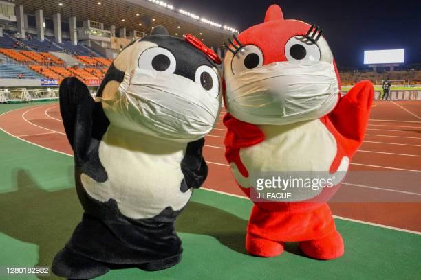 Guranpakochan and Gurara of Nagoya Grampus mascot pose for a photo prior to the J.League Meiji Yasuda J1 match between Nagoya Grampus and Consadole...