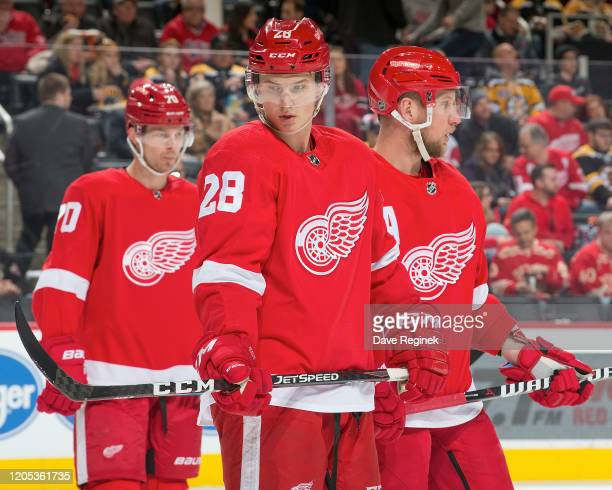 Gustav Lindstrom of the Detroit Red Wings gets set for the face-off against the Boston Bruins during an NHL game at Little Caesars Arena on February...