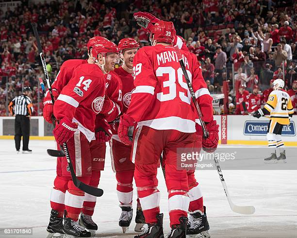 Gustav Nyquist of the Detroit Red Wings celebrates his goal with teammates Anthony Mantha, Thomas Vanek and Nick Jensen during an NHL game against...