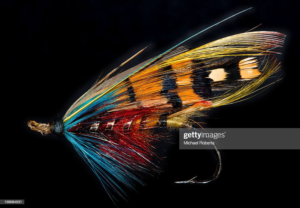 Gut-eyed Durham Ranger salmon fly : Stock Photo