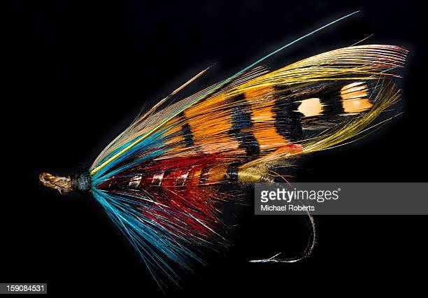 gut-eyed durham ranger salmon fly - fly casting stock pictures, royalty-free photos & images